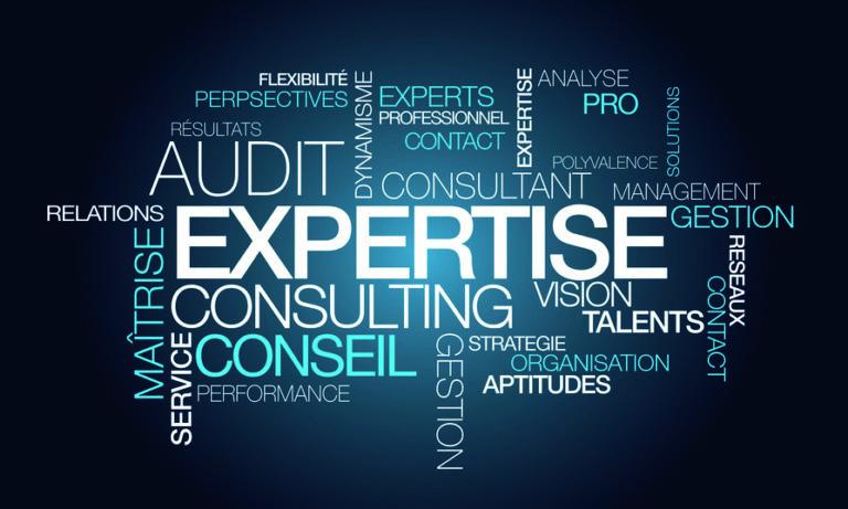 Expertise sociale auprès des établissements sociaux et médico-sociaux