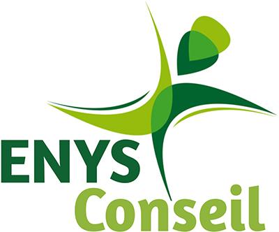 Enys Conseil Logo